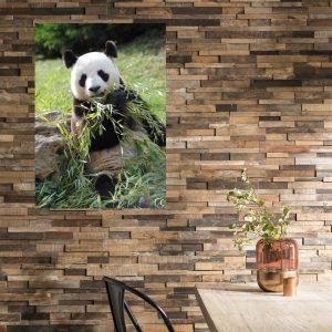 Alu panda